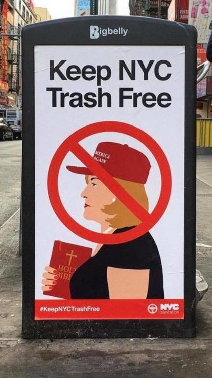democrat campaign ad.jpg