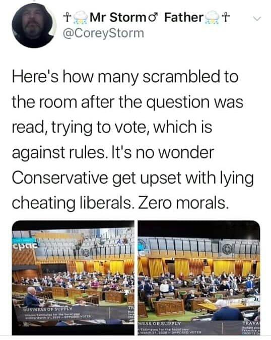 confidence vote.jpg