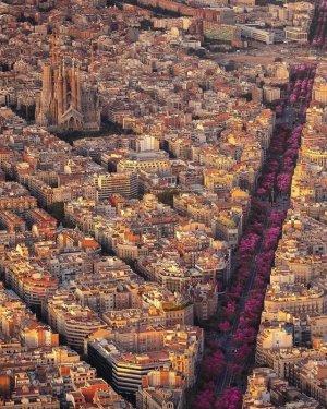 Barcelonab.jpg