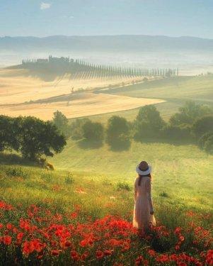 tuscanyb.jpg
